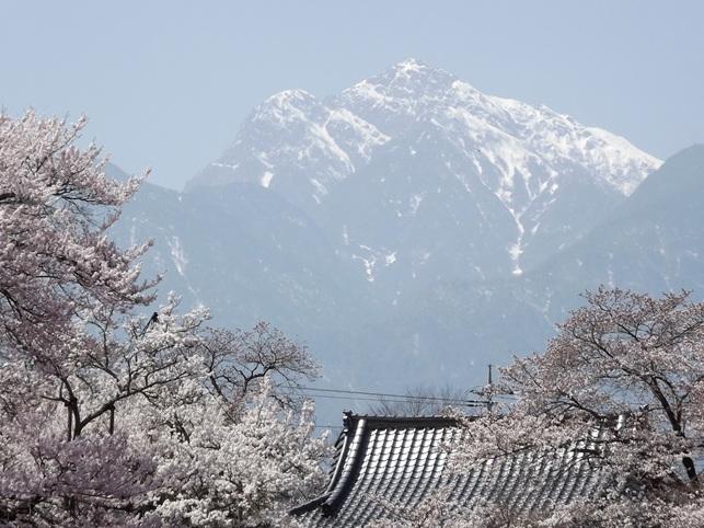 iwata402.jpg